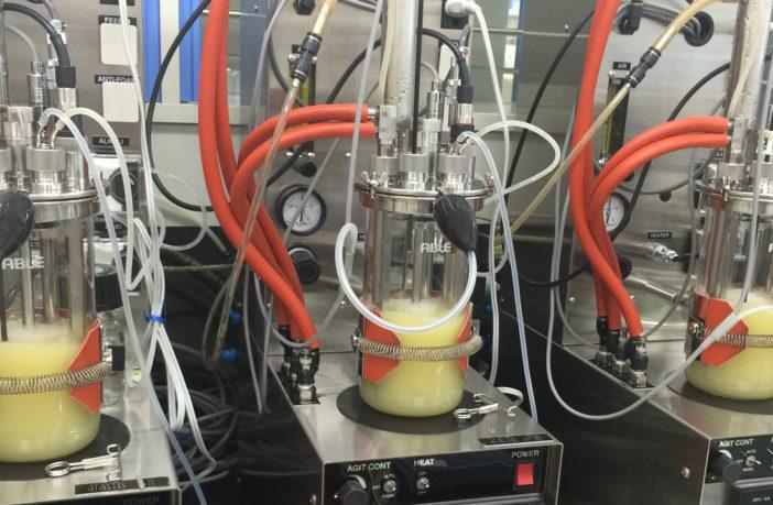 Yokohama reveals more on its revolutionary technology to produce isoprene from biomass