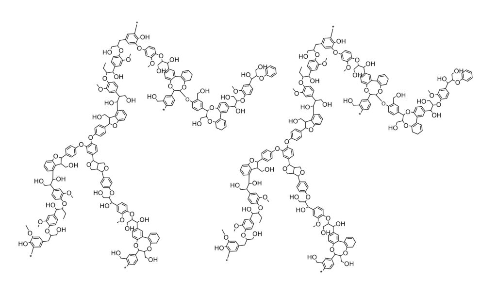 Lignin chemical structure carbon fiber